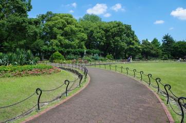 公園と左カーブの道