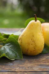 Fresh pear with water droplets