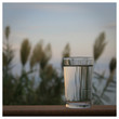 canvas print picture - Glas Wasser