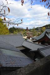 瓦屋根と五重塔