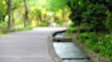 遊歩道を走り抜けるジョガー3