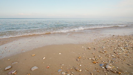 Shore on the beach
