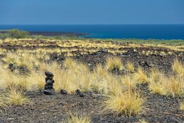 big island lava coast