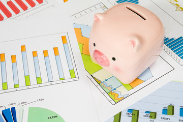 Piggy bank with business charts