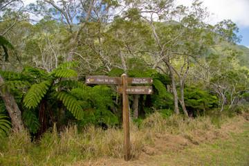 Wandern auf Reunion