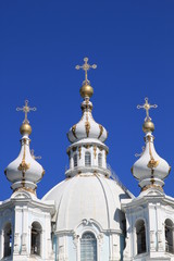 Купола Храма Воскресения Христова (Смольного Собора)