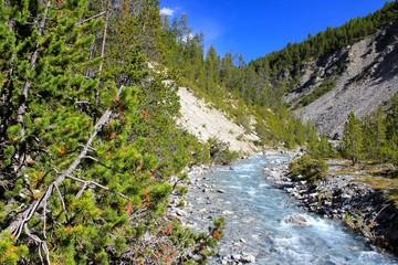Schweizer Nationalpark Spöl