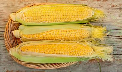 corn on the cob in basket