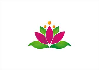 Ecological emblem or logo vector illustration lotus