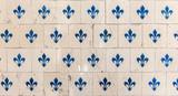 Old tiles fleur de lys