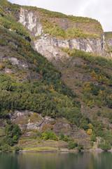 dans les fjords