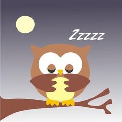 buho durmiendo