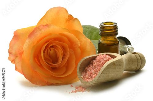 canvas print picture Rossläktet Rosa Rose Rosen Rosier Róża Шиповник Gül