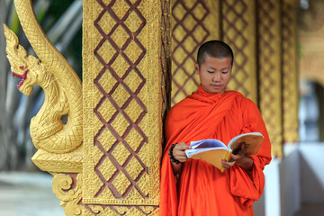 Young Buddhist Monk Reading Prayer Book