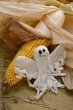 Zea mays Maïs Mais Kukurydza zwyczajna Mısır bitki poster