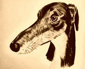 Quirky hand-drawn lurcher original artwork