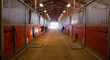 Center Path Through Horse Paddock Equestrian Ranch Stable - 69478833