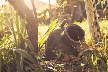Old pot in the garden