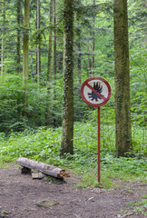 No Fires in the woods