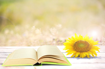 Open book with sunflower on table outdoors