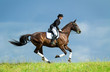 Woman riding a horse on the hill. Equestrian sport - dressage. - 69483474