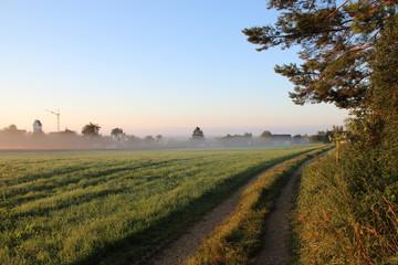 Sonnenaufgang im Nebel am Dorfrand
