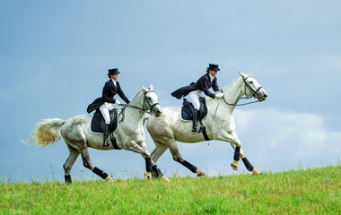 Two women riding white horses. Equestrian sport - dressage.