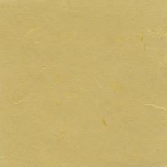 Beige paper background