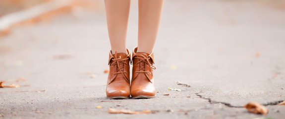 Brown female shoes in the autumn park.