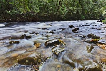 Tasmania franklin 02 river