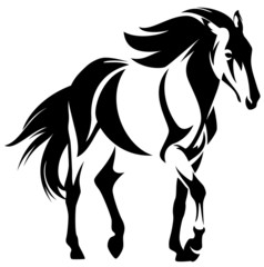 wild horse black and white outline