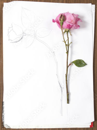 canvas print picture vertical hand drawing and image of roses