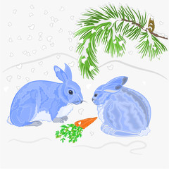 Rabbits and snow with pine branches christmas theme vector