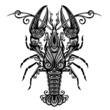 Vector Sea Lobster. Patterned design - 69493692