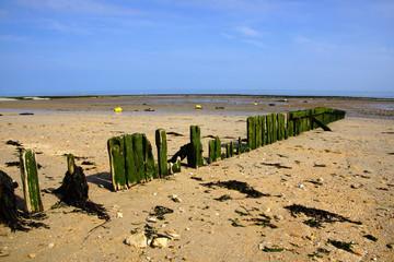 Holzwellenbrecher in der Normandie