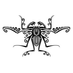 Vector Beautiful Spider, Exotic Insect. Phryne, Tattoo