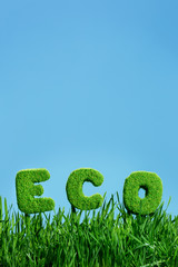 word of eco on grass