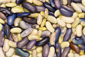 a large pile beans