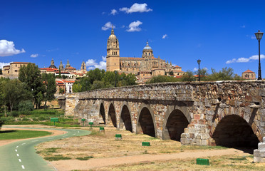 Salamanca view with Cathedral and Roman bridge