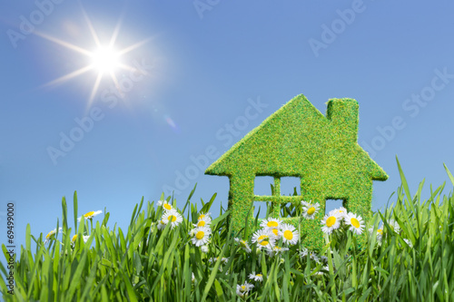 house from grass - 69499000