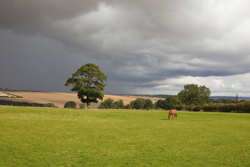 storm clouds over rural landscape