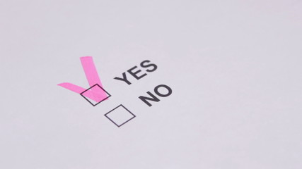 Vote for YES or NO