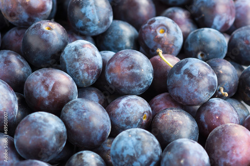 canvas print picture Fresh plums closeup background