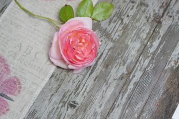 Rose auf Holzhintergrund
