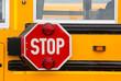 School bus - 69508268