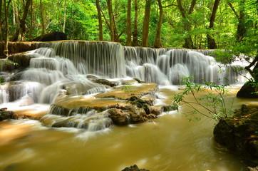 Deep Forest Waterfalls