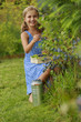 Summer garden - beautiful girl picking blueberries