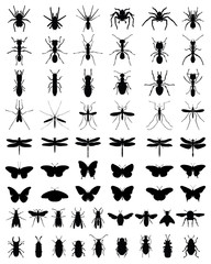 Black silhouettes of insects, vektor