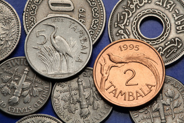 Coins of Malawi