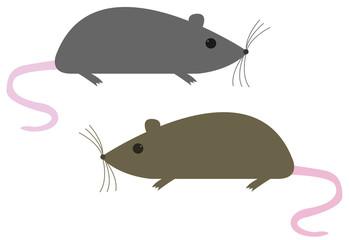 deux souris